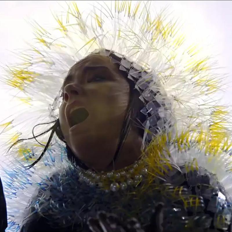 Björk<br/>Lionsong